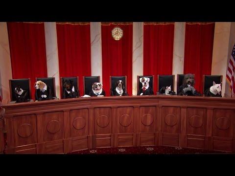 RadLAX Gateway Hotel v. Amalgamated Bank: Oral Argument - April 23, 2012