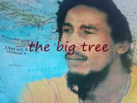 Bob Marley - Small Axe karaoke