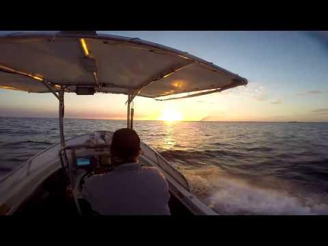 Fishing The Artificial Reef Off Bundaberg