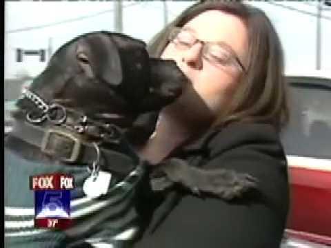 FOX 5 Vick Pit Bulls Brandon Bond Georgia SPCA Rescue Ver. 2