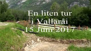 Vallaråi Seljord