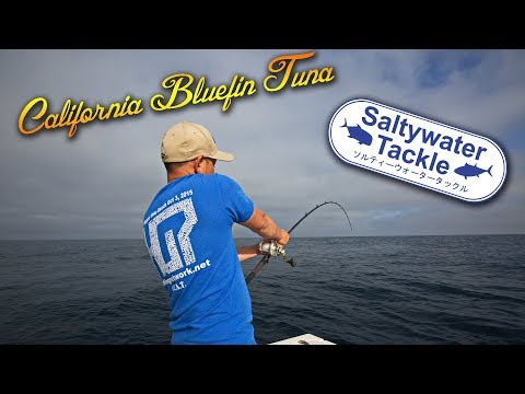 90 Pound Bluefin Tuna Caught on 25 Pound Line