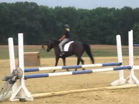 Hannah and Paela lesson with Mogie
