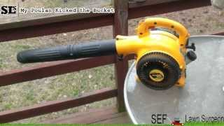 My Poulan Leaf Blower Kicked the Bucket