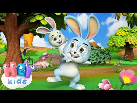 Il Coniglietto  Canzone per bambini con conigli