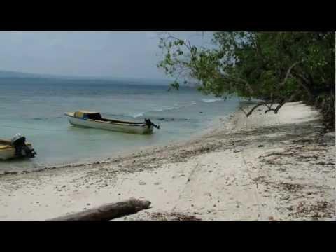 Beach front Malo Island Vanuatu
