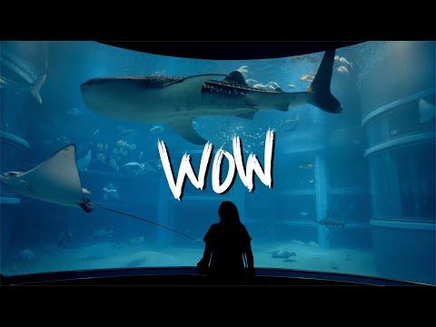 Osaka Aquarium is AMAZING!!! (Kaiyukan Aquarium)