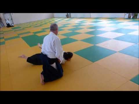 Aikido Chris Mooney Shihan in Israel