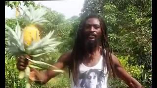 Ras Gee Doctor Congo