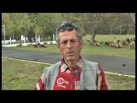 """Ky është vendi im- Peza, së shpejti me status ligjor """"Park Natyror Rajonal"""""""