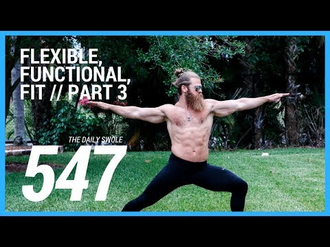Combining With Strength Training (Flexible, Functional and Fit)   Daily Swole 547