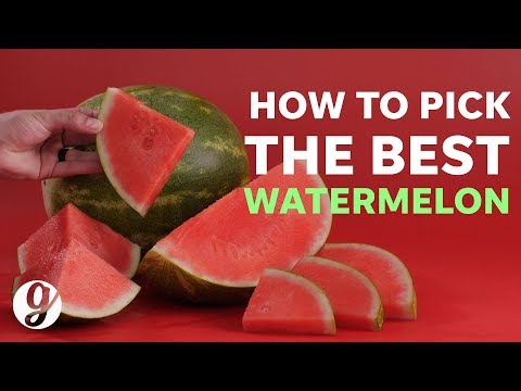 How To Pick The Best Watermelon Every Time | GRATEFUL