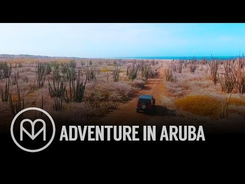 Adventures in Aruba