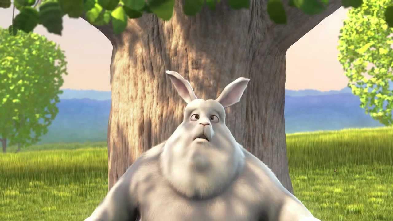 Толстый заяц смешные картинки