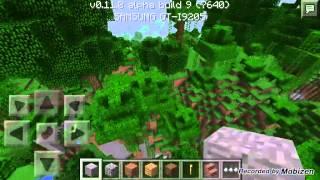 Minecraft biggest jungle seed