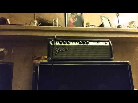 1973 Fender Bassman 50 Silverface With Tweed Mod.