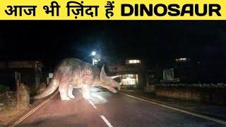 35 सबूत की Dinosaur हैं बेहद शानदार जीव   35 Most Amazing Facts About Dinosaur
