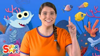 Baby Shark | featuring Caitie | Nursery Rhymes from Caitie's Classroom