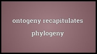 Ontogeny recapitulates phylogeny Meaning