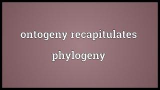 Ontogeny recapitulates phylogeny Meaning