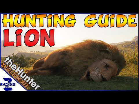Ultimate Lion Hunting Guide Call Of The Wild (2020)