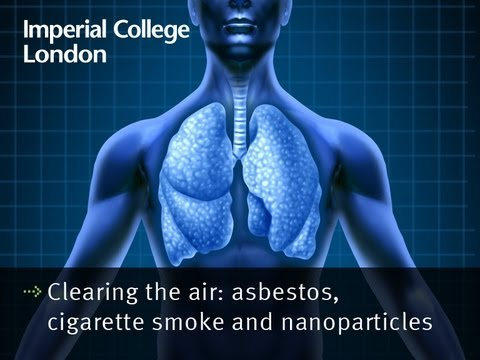 Clearing the air: asbestos, cigarette smoke and nanoparticles