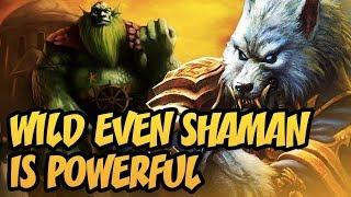 Hearthstone: Wild Even Shaman Is Powerful