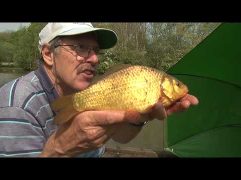How to Fish: River Float Fishing with Lures from YouTube · High Definition · Duration:  14 minutes 40 seconds  · 25.000+ views · uploaded on 19.09.2015 · uploaded by Fishing with Rod