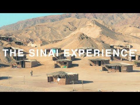 The Sinai Experience