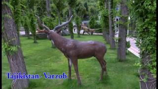 Варзоби зебоманзар