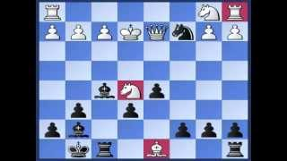 Best Attacking Chess Game in COLORADO Gambit