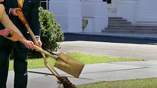 Посадить дерево у Белого дома