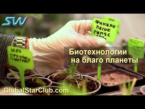 SkyWay - Биотехнологии на благо планеты