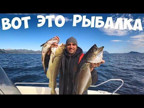 Рыбалка в океане на спиннинг в Норвегии. Жарю филе люра.
