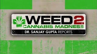 Трава 2, Марихуановое безумие/Weed 2, Cannabis Madness. CNN, 2014 рус/англ субтитры(, 2014-08-12T14:42:07.000Z)