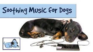 Soothing Sounds and Music for Dogs: Improve Separation Anxiety in Pets thumbnail
