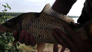Суточная рыбалка на карпа Попали под дождь Готовим на костре