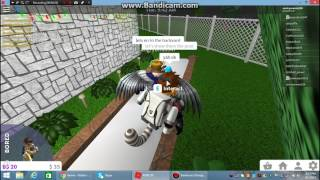Roblox - Bloxburg W/Angrybirds347