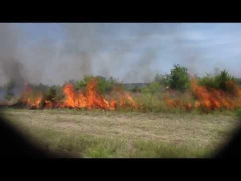 Indiangrass Wildlife Sanctuary prescribed burn July 2013 Louis Rene Barrera