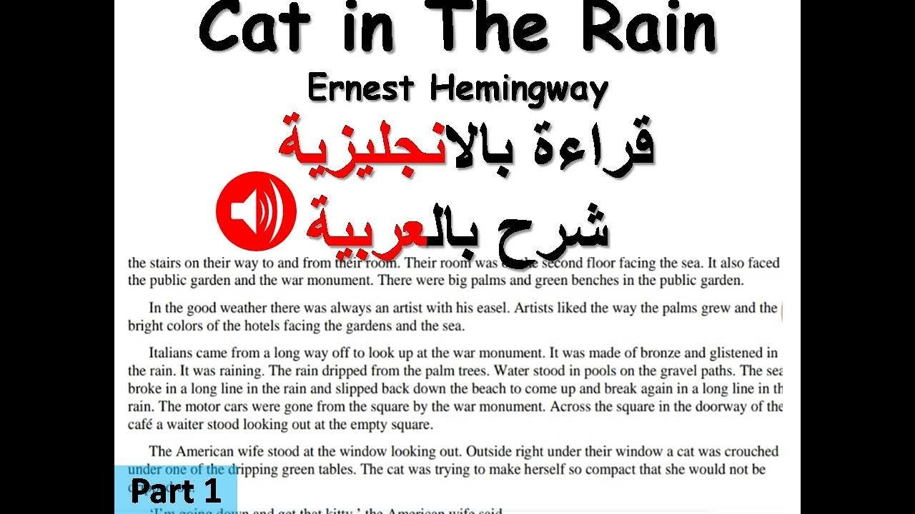 cat in the rain text