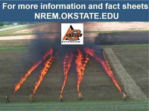 SFE Webinar: Burning Outside The Box In The Midwest