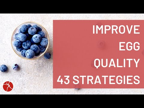 How To Improve Egg Quality - 43 Strategies to Increase the Health ...