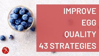 How To Improve Egg Quality - 43 Strategies to Increase the Health of Your Eggs