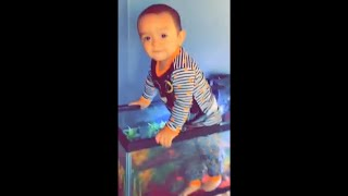 Parent Finds His Toddler Standing Inside A Fish Tank