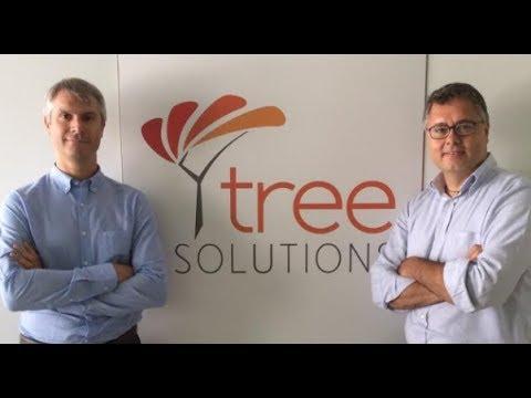 I consigli per l'estate di Tree Solutions, la startup dell'energy efficiency