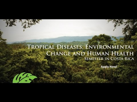 Trop Talk: Tropical Diseases, Environmental Change & Human Health in Costa Rica