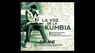 DJ Kane- Te quiero