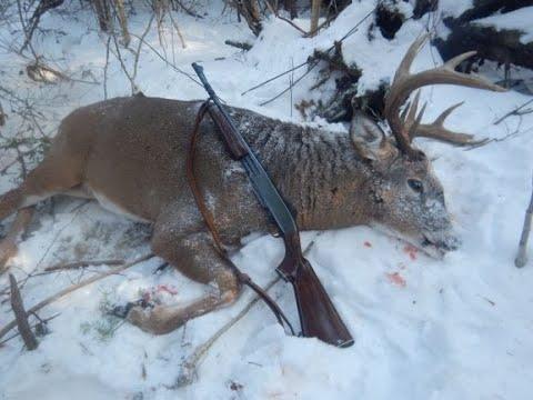2019 Maine Deer Hunt