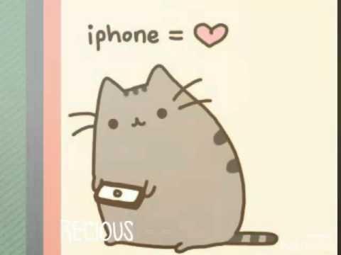 Пикси бобФотографии, видео породы кошек Пикси боб