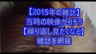 Japanese magazine 2015 8 1 【映画鑑賞&グッズ探求記 映画チラシ 劇場...